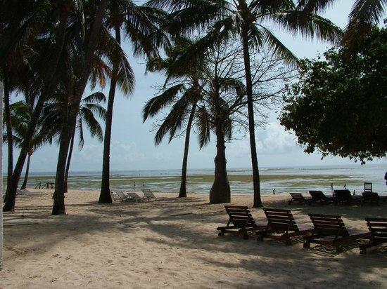 Sandies Coconut Village: zeermooi zeezicht