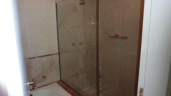 Gran Estanplaza Berrini: Shower