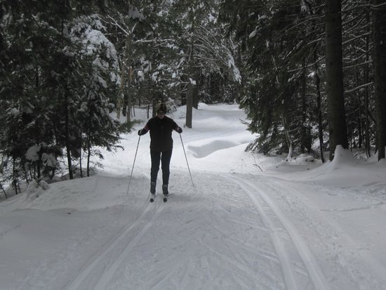 Lapland Lake Cross Country Ski Center: On one of the trails.