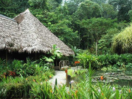 Esquinas Rainforest Lodge: The main lodge building