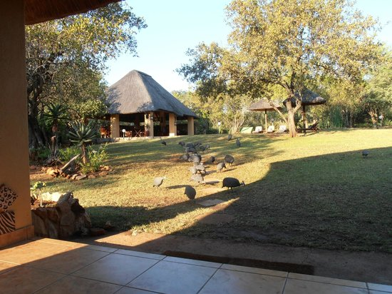 Royal Kruger Lodge: Hotel grounds