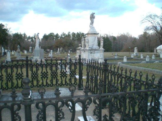 Oakwood Cemetery照片