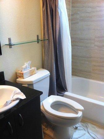貿易風公寓飯店照片