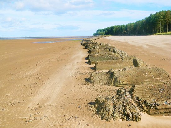 WW2 Barriers on Tayport Beach.. - Picture of Tayport, Fife ...