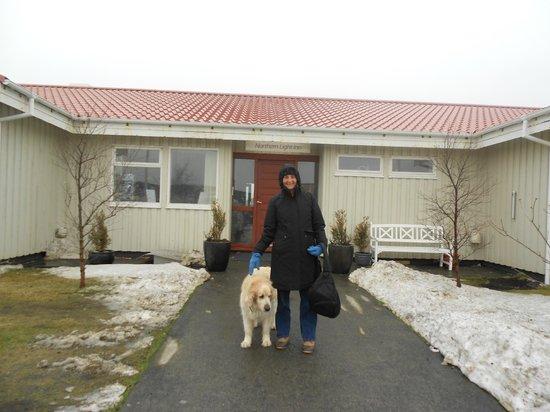 Northern Light Inn: Max, the NLI Golden Retreiver