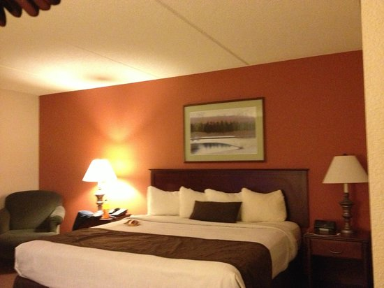 AmericInn Hotel & Suites Mounds View: Furnished with mini fridge, TV, microwave