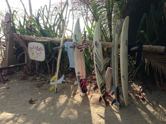 Del Mar Surf Camp: the best in santa teresa