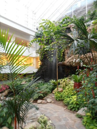 Dusit Thani Pattaya: Garden in the reception area