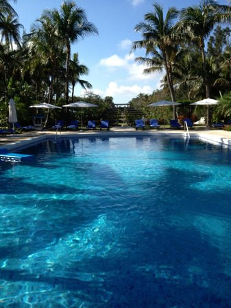 One & Only Ocean Club: Dive in!