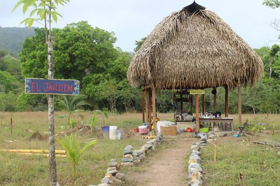 Jungle Adventures by Kalu Yala: 2013- Farm has grown since then!