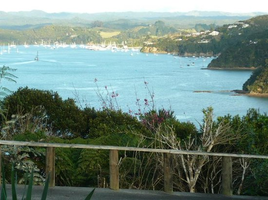 Swallows Nest Accommodation: Watch the Opua ferry from your window.