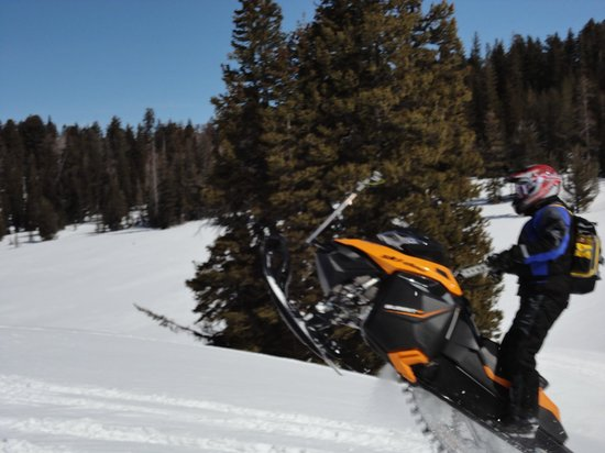 Beaver Creek Lodge: Snowmobiling was the best!