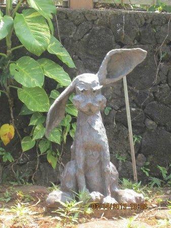 Na Aina Kai Botanical Gardens: Bad Hare Day in the Children's Garden