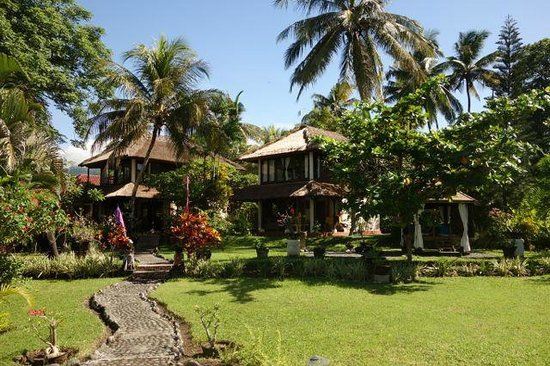 Abalone Resort: the cottages