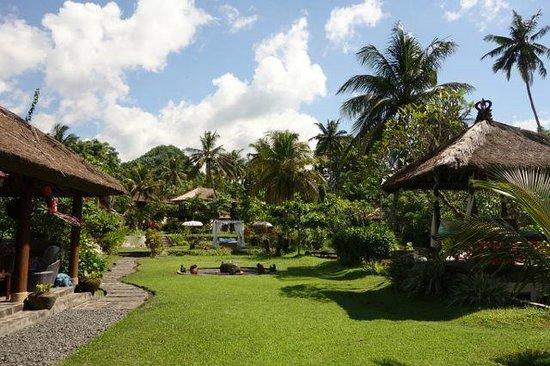 Abalone Resort: the garden