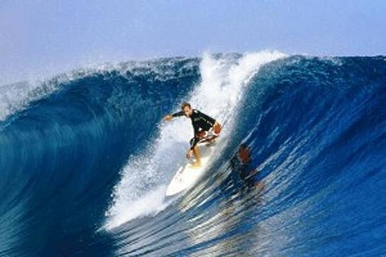 Palmlea Farms Lodge & Bures: Surfing the Great Sea Reef from Nov. to April