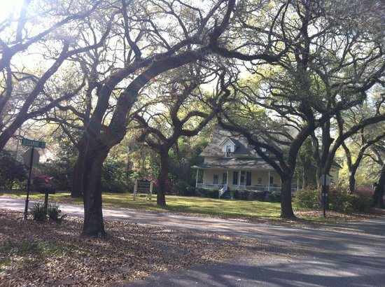 Magnolia Springs Bed & Breakfast : The house