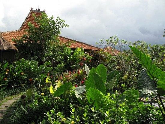 Umajati Retreat: Guest House & Gardens