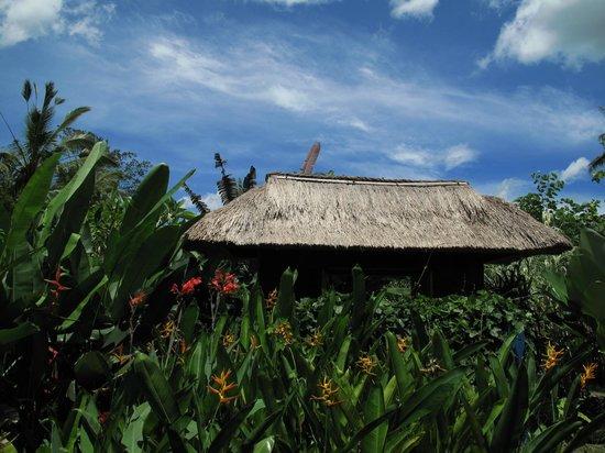 Umajati Retreat: Guest House Entrance