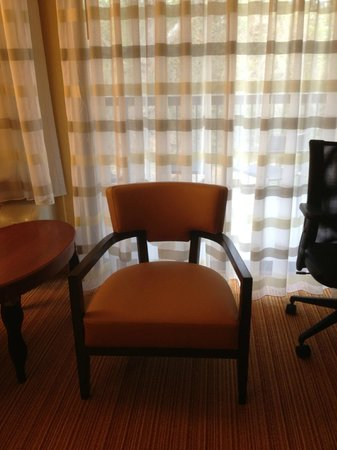 Courtyard Tampa North/I-75 Fletcher: Only other chair in the room (no ottomon)