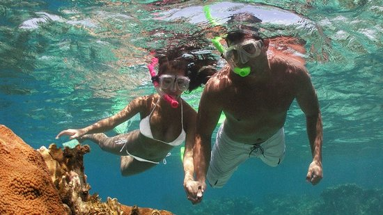 Barefoot Cay Resort: Great snorkeling at the house reef by the palapa, or head out on one of the boats