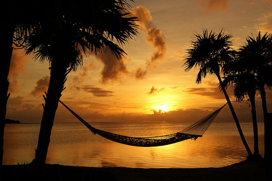 Barefoot Cay Resort: Lots of hammocks for romantic moments