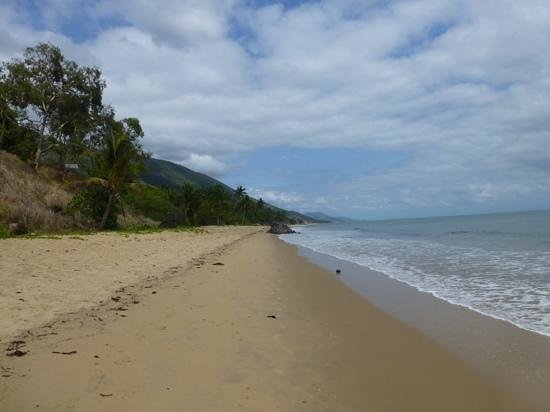 The Reef House Palm Cove - MGallery Collection : Buchans Beach just north of Palm Cove, ideal for early morning walks
