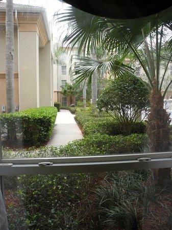 Quality Suites Lake Buena Vista: Blick aus Fenster