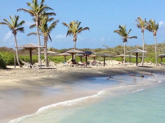Nisbet Plantation Beach Club: Afternoon at Nisbet Plantation, Nevis