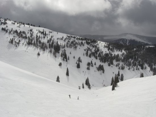 Vail Mountain Resort : back bowl