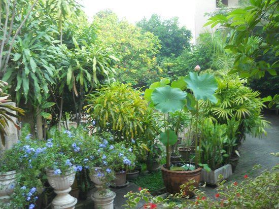 Lai-Thai Guest House: Courtyard, Lai Thai Guest House