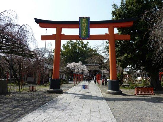 Hirano Shrine: 平野神社