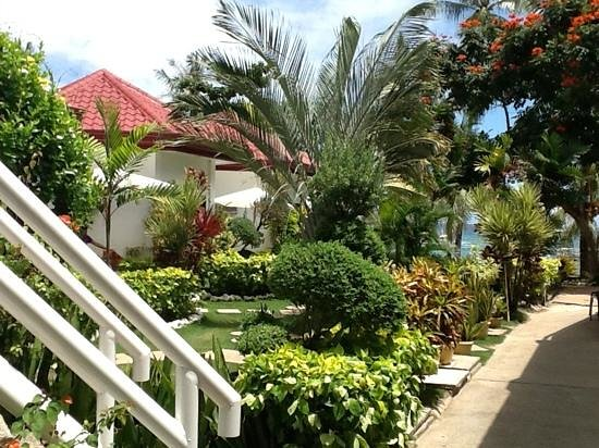 Isis Bungalows: garden view