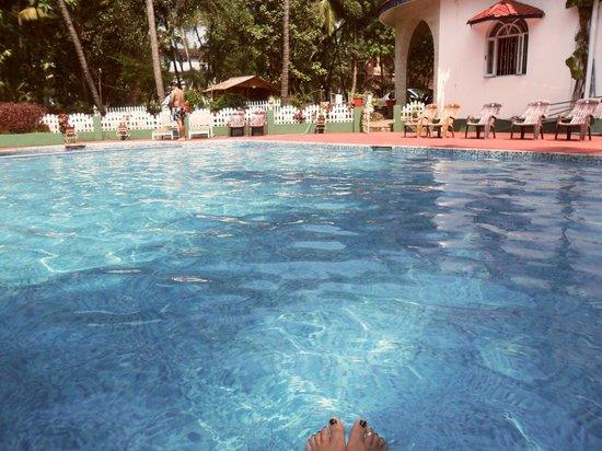 Palm View Inn: Pool area