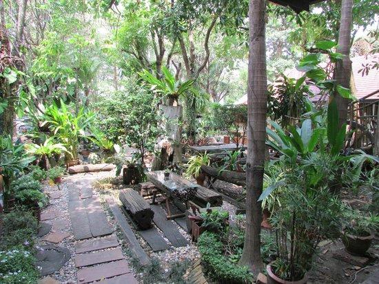 Bangkok Garden Resort : The Garden
