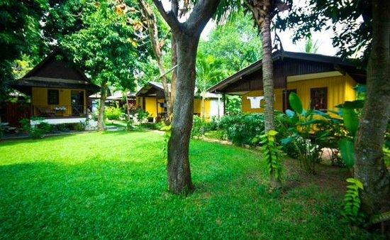 New Leaf Detox Resort - Garden