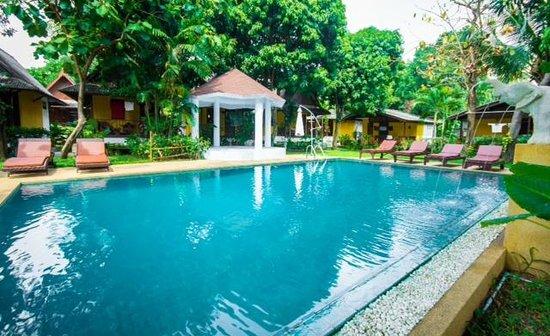 New Leaf Detox Resort - Chemical Free Pool