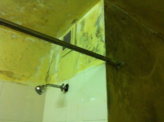 Rukmini Riviera Hotel: Leaking and Muddy walls
