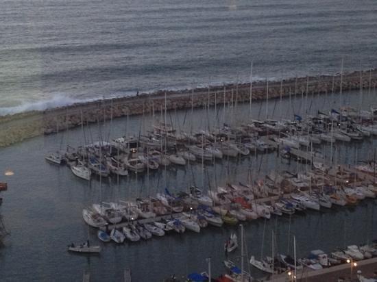 Herods Tel Aviv: the marina