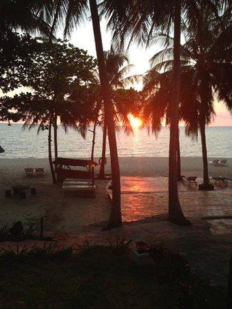 Tropicana Resort Phu Quoc: beachview bungalow