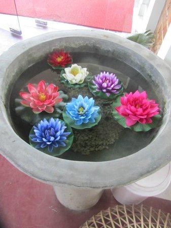 Decorative Lotus Flowers In The Water Feature By Front Door
