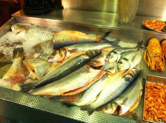 Casarao do Castelo: Selection of fish