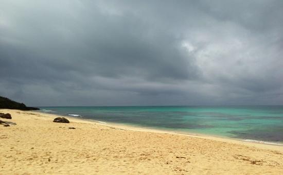 Nagamahama Beach Coast: 海の色が美しい!