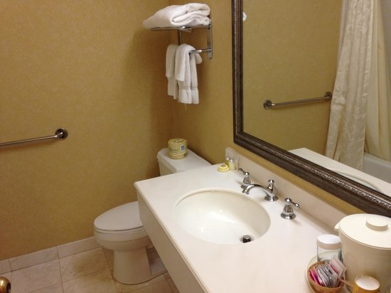 Coventry Motor Inn: Bathroom, always very clean