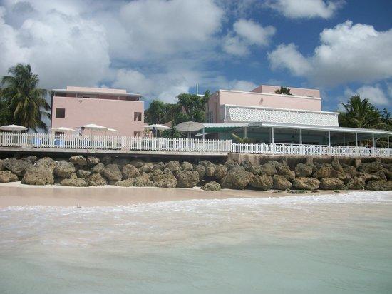 Butterfly Beach Hotel: Restaurant
