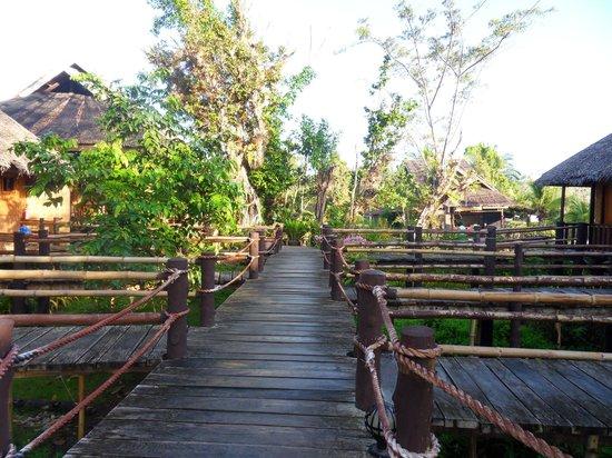 Loboc River Resort: Walkway to the rooms