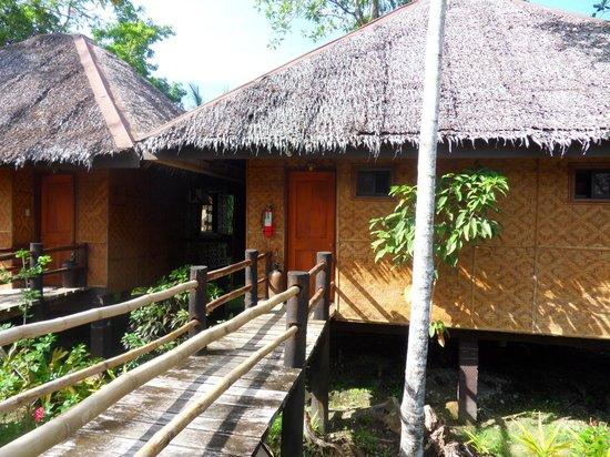 Loboc River Resort: Room entrance
