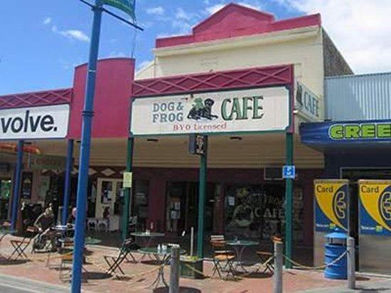 Dog & Frog Cafe Foto