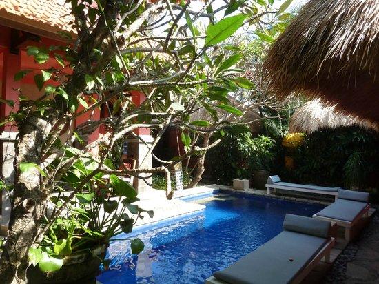 Flashback's: Pool und Garten
