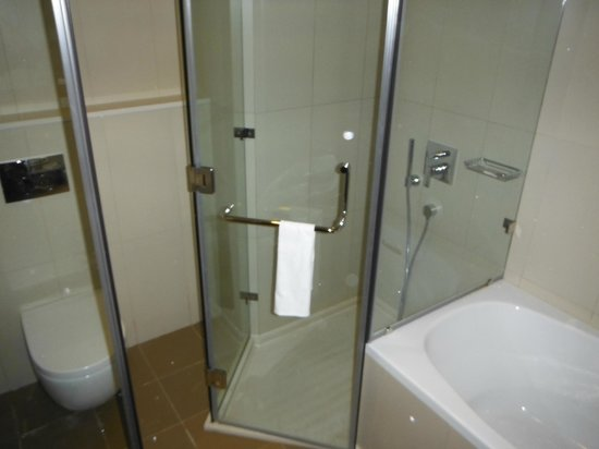 Novotel Abu Dhabi Gate: Bathroom with tub, and rain shower.  Very clean!